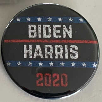 Biden Harris - vintage button